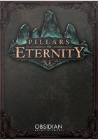 obrázek Pillars of Eternity (Hero Edition)